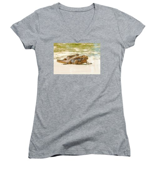 Marine Iguana On Galapagos Islands Women's V-Neck T-Shirt