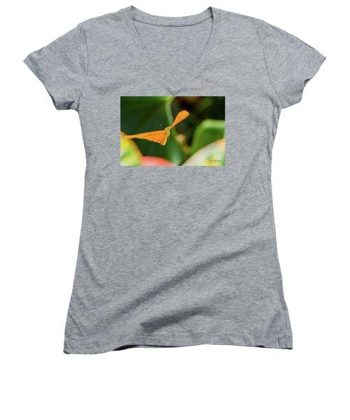 Miracle Of Flight Women's V-Neck T-Shirt