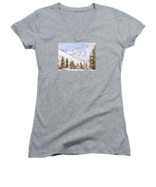 Natural Nature Women's V-Neck T-Shirt (Junior Cut) by Marilyn Diaz