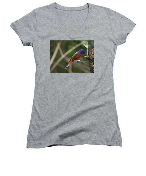 Painted Bunting Women's V-Neck