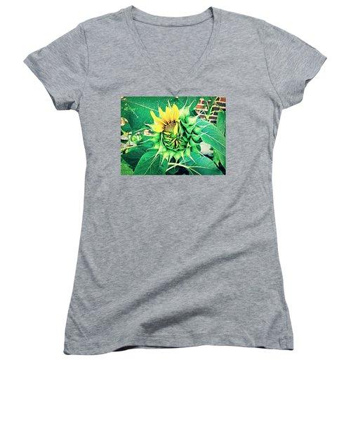 Peeping Sunflower Women's V-Neck T-Shirt (Junior Cut) by Angela Annas