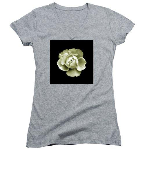 Peony Women's V-Neck T-Shirt (Junior Cut) by Charles Harden