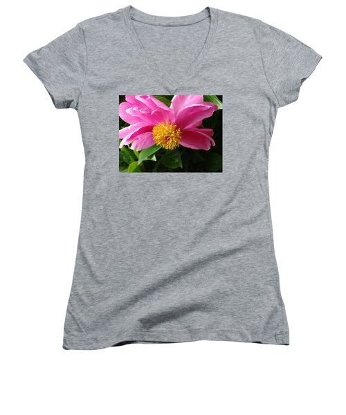 Pink Peony Women's V-Neck T-Shirt (Junior Cut) by Rebecca Overton