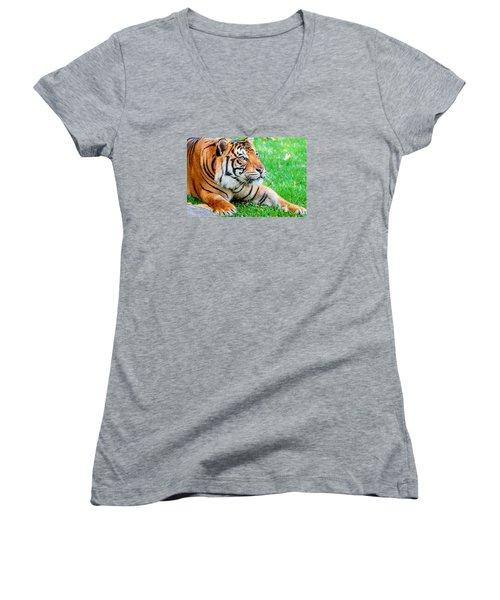 Pre-pounce Tiger Women's V-Neck