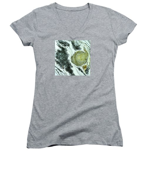 Primordial Soup Women's V-Neck T-Shirt (Junior Cut) by Bob Wall