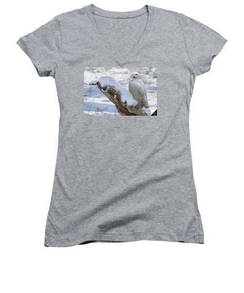 Women's V-Neck T-Shirt (Junior Cut) featuring the photograph Snowy Owl by Jim  Hatch