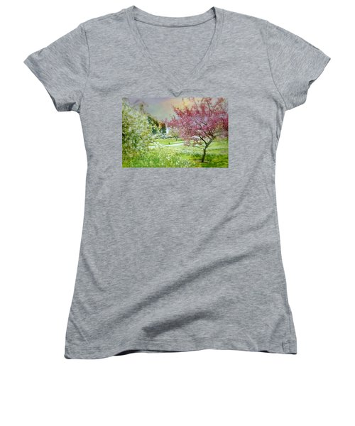 Women's V-Neck T-Shirt (Junior Cut) featuring the photograph Solitude by Diana Angstadt