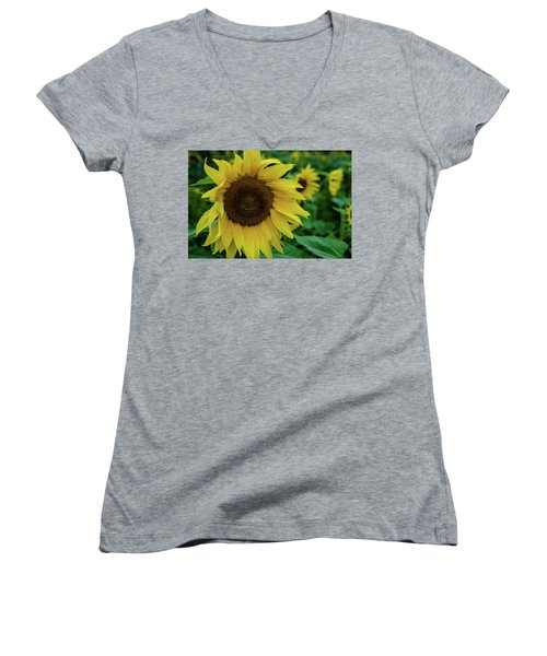 Sunflower Fields Women's V-Neck T-Shirt (Junior Cut) by Miguel Winterpacht