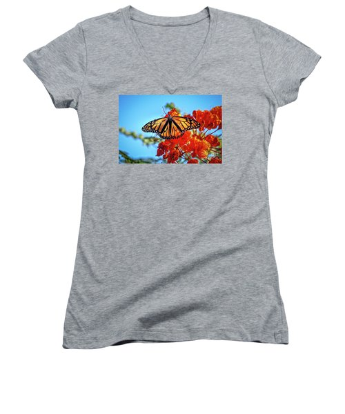 The Resting Monarch Women's V-Neck T-Shirt (Junior Cut) by Robert Bales