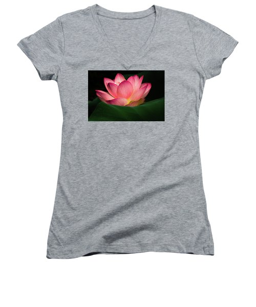 Women's V-Neck T-Shirt (Junior Cut) featuring the photograph Water Lily by Jay Stockhaus