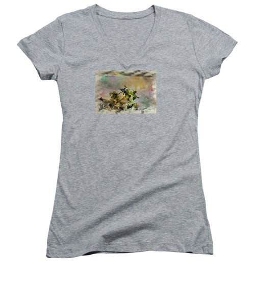 White Breasted Nuthatch Women's V-Neck T-Shirt (Junior Cut) by Yumi Johnson
