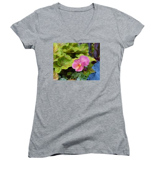 2015 After The Frost At The Garden Pansies 3 Women's V-Neck
