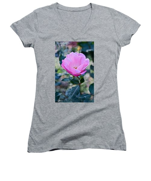 2015 After The Frost At The Garden Pink  Rose Women's V-Neck