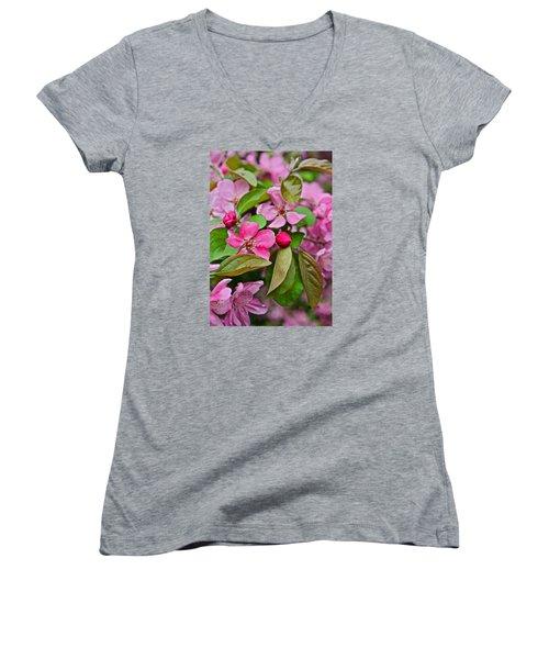 2015 Spring At The Gardens Pink Crabapple Blossoms 2 Women's V-Neck