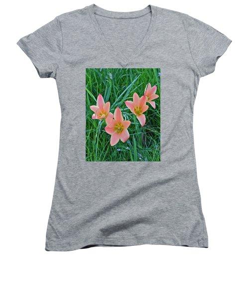 2015 Spring At The Gardens Meadow Garden Tulips 3 Women's V-Neck