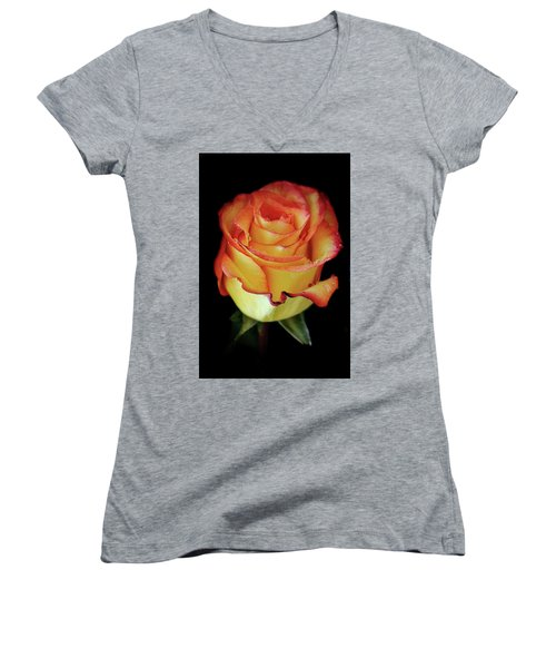 23rd Anniversary Rose Women's V-Neck