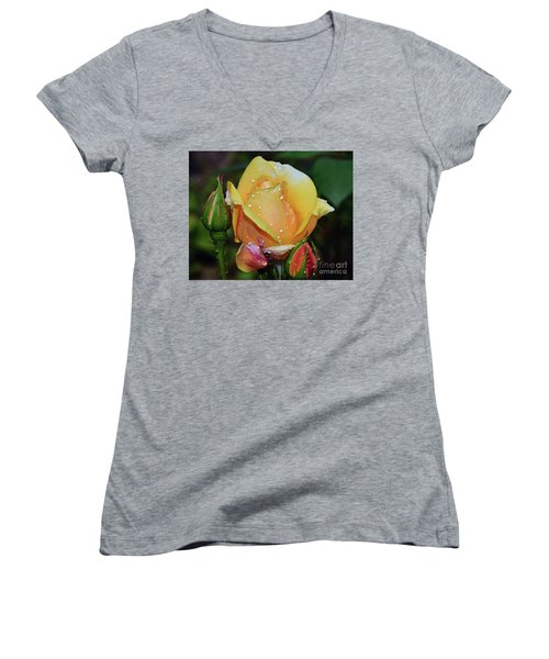 Women's V-Neck T-Shirt (Junior Cut) featuring the photograph Nice Rose by Elvira Ladocki