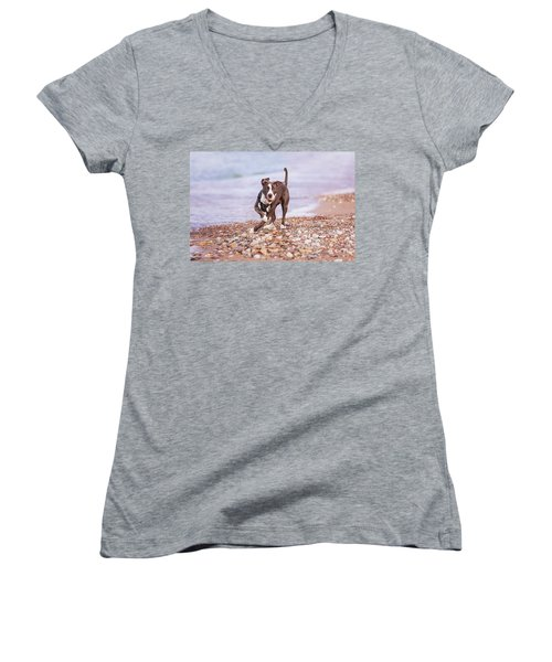 Women's V-Neck T-Shirt featuring the photograph American Pitbull Terrier by Peter Lakomy