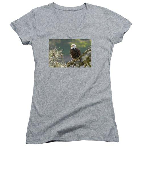 Bald Eagle Women's V-Neck T-Shirt (Junior Cut) by Doug Herr