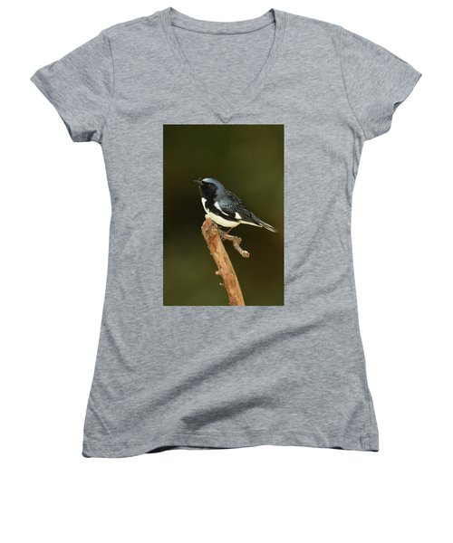Black-throated Blue Warbler Women's V-Neck T-Shirt (Junior Cut) by Alan Lenk