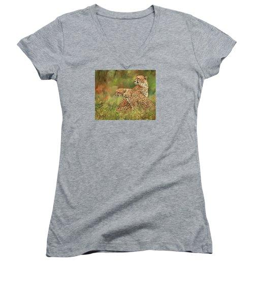 Cheetahs Women's V-Neck T-Shirt (Junior Cut) by David Stribbling