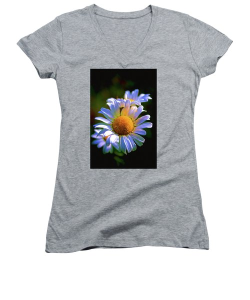 Daisy Women's V-Neck T-Shirt (Junior Cut) by Andre Faubert