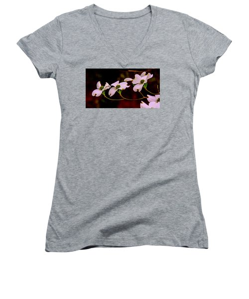 Women's V-Neck T-Shirt (Junior Cut) featuring the photograph 3 Dogwood Blooms On A Branch by John Harding