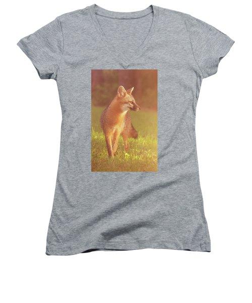 Fox Women's V-Neck