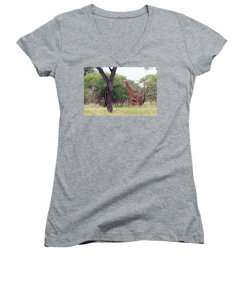 Giraffes Eating Acacia Trees Women's V-Neck (Athletic Fit)