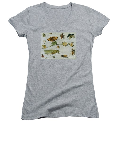 Insects Women's V-Neck (Athletic Fit)