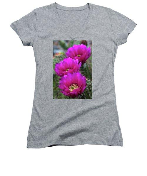Women's V-Neck T-Shirt (Junior Cut) featuring the photograph Pink Hedgehog Cactus  by Saija Lehtonen