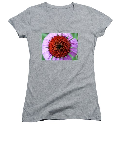 Purple Coneflower  Women's V-Neck T-Shirt (Junior Cut) by Rebecca Overton