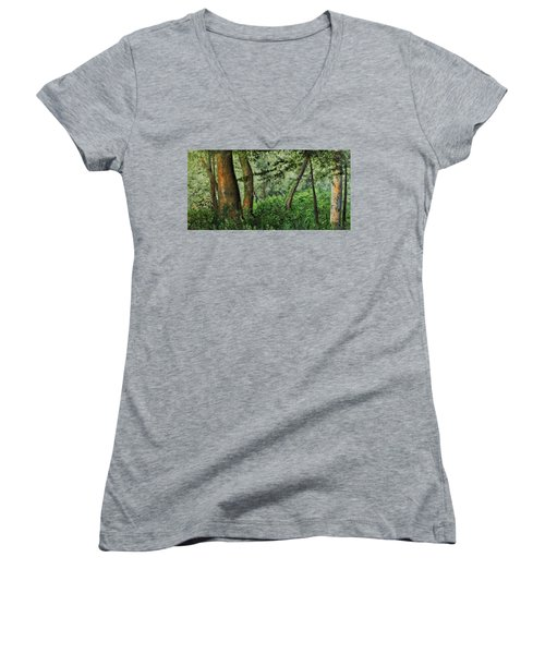 Tranquility Women's V-Neck T-Shirt