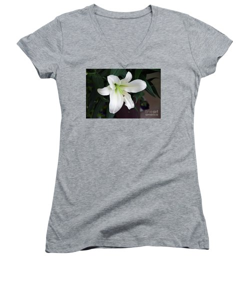 White Lily Women's V-Neck T-Shirt (Junior Cut) by Elvira Ladocki