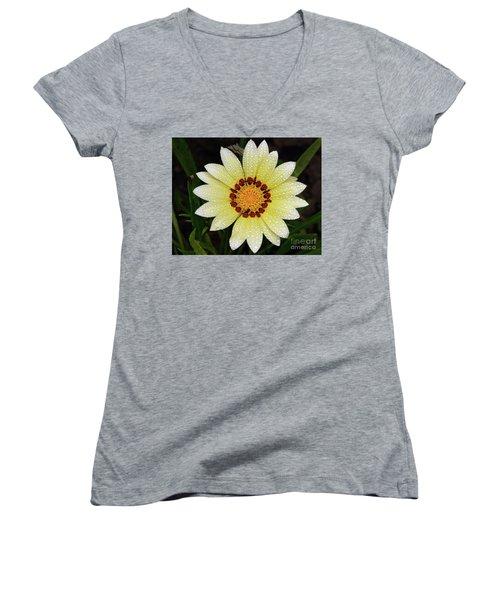 Nice Gazania Women's V-Neck T-Shirt (Junior Cut) by Elvira Ladocki