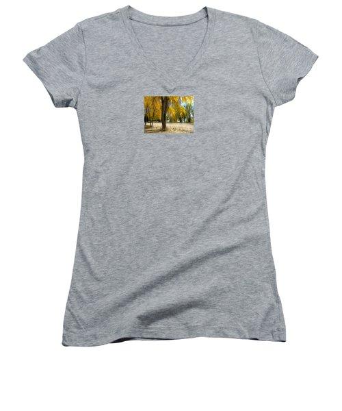 3975 Women's V-Neck T-Shirt (Junior Cut) by Peter Holme III