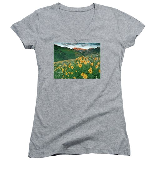 Albion Basin Wildflowers Women's V-Neck (Athletic Fit)