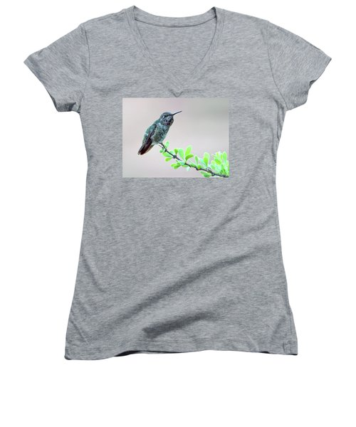 Anna's Hummingbird Women's V-Neck T-Shirt (Junior Cut) by Tam Ryan