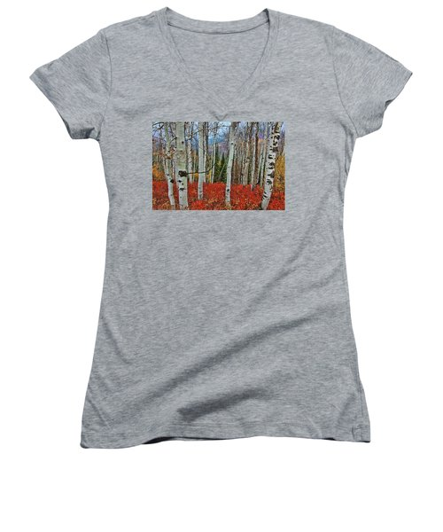 Rocky Mountain Fall Women's V-Neck (Athletic Fit)