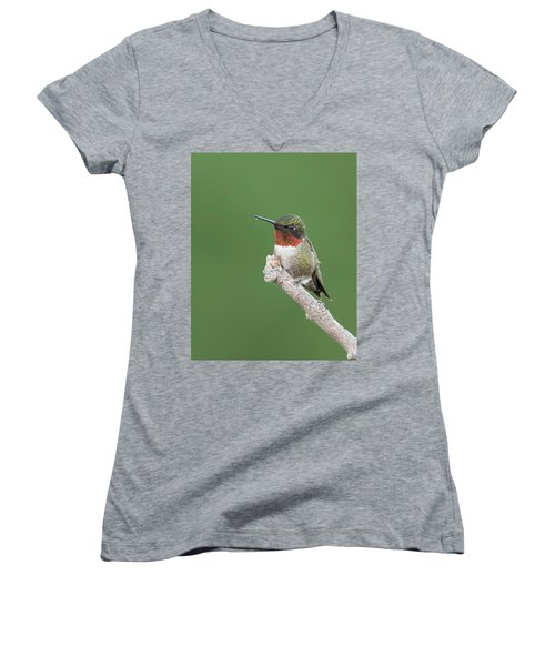 Ruby-throated Hummingbird Women's V-Neck (Athletic Fit)