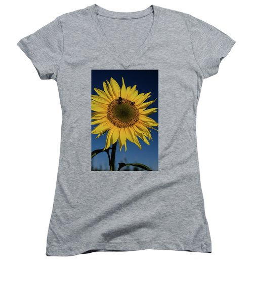 Sunflower Fields Women's V-Neck