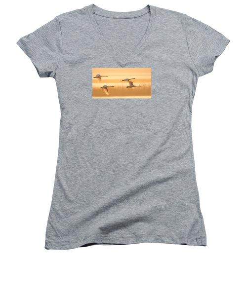 4 Swans Women's V-Neck T-Shirt (Junior Cut) by Kelly Marquardt