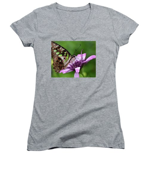 Tailed Jay Women's V-Neck T-Shirt (Junior Cut) by Ronda Ryan