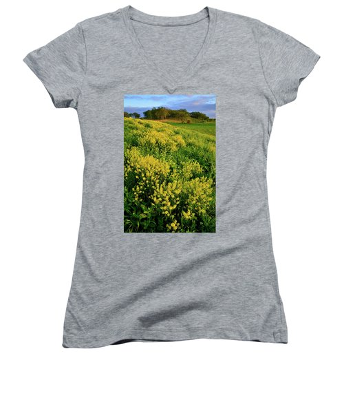 Wildflower Prairie In Glacial Park  Women's V-Neck (Athletic Fit)