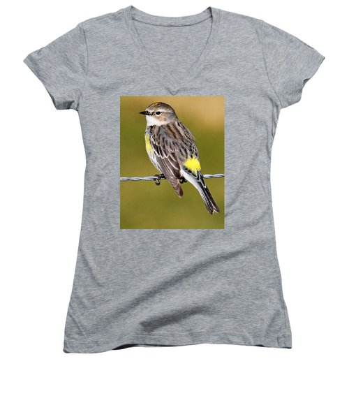 Yellow-rumped Warbler Women's V-Neck