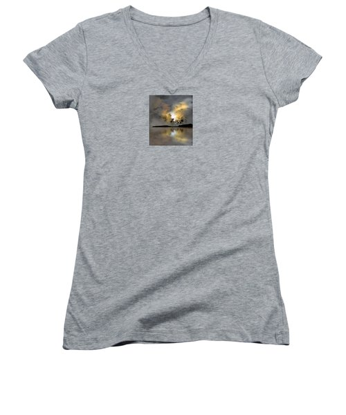4066 Women's V-Neck T-Shirt