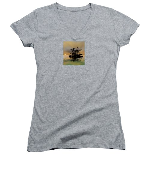Women's V-Neck T-Shirt (Junior Cut) featuring the photograph 4374 by Peter Holme III
