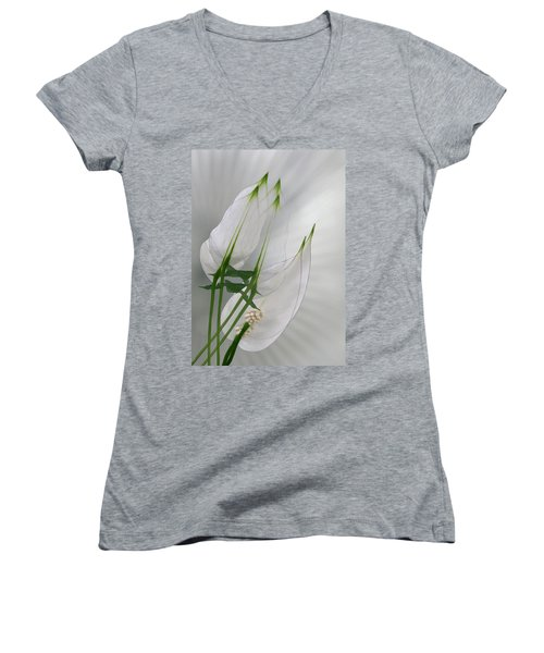 Women's V-Neck T-Shirt (Junior Cut) featuring the photograph 4425 by Peter Holme III