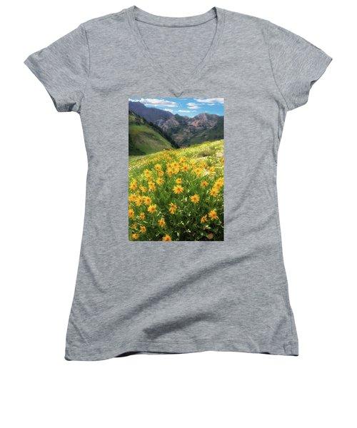 Albion Basin Wildflowers Women's V-Neck T-Shirt
