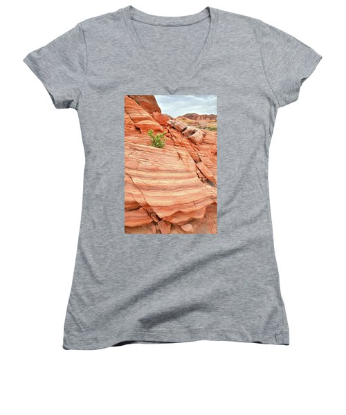 Women's V-Neck T-Shirt (Junior Cut) featuring the photograph Colorful Wash In Valley Of Fire by Ray Mathis